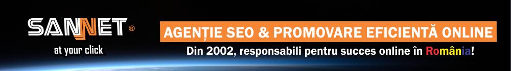 agentie SEO & promovare eficienta online Botosani